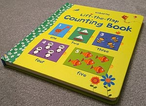 usborne lift the flap